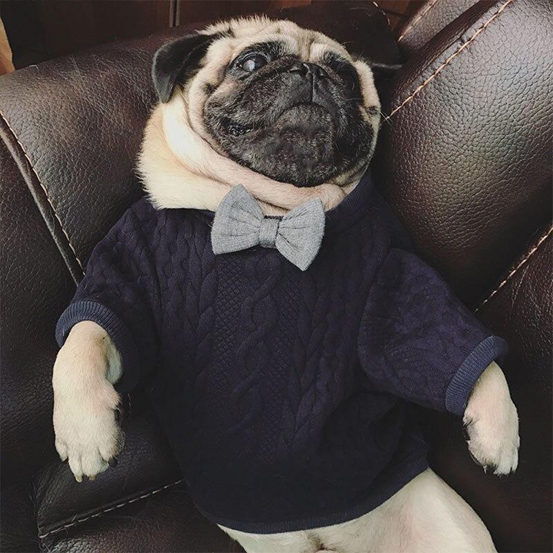 Navy-Blue-Dapper-Sweater