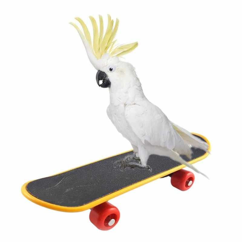 Pet Bird Toys Parrot Toys Funny Intelligence Skateboard Toy Stand Perch Toy For Parakeet Cockatiels Bird Training Accessories