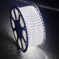 Cool White Waterproof 220V IP67 5 100M 60 LEDs/ meter Bright Flexible 5050 SMD LED Outdoor Garden Home Strip Rope Light