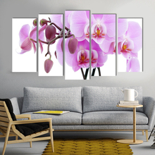 Realistic pink Phalaenopsis flower canvas painting countryside art prints 5 psc simple wall pictures for living room hallway