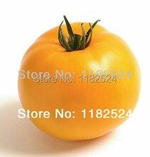 Orange schneidemaschine für die treibhaus Beorange (F1) Tomatensamen obst gemüse samen (50 SEEDS)