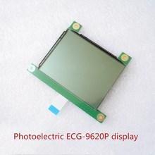 For Japan Shanghai Optoelectronics ECG 9620P Display Screen