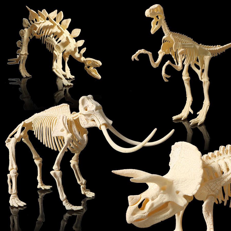 3D Skeleton DIY Assembly Dinosaur Models Plastic Bone Toy For Children,Triceratops/stegosaurus/velociraptor/mammoth For Choose