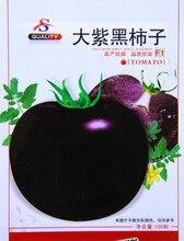 Большой фиолетовый семена помидоров, Бесплатная доставка дешевые семена помидоров, Плоды в горшке семян, Бонсай балкон цветок — около 100 шт./пакет