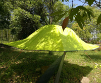 Flytop 2 Person High Quality New Arrival Aluminum Pole Waterproof Ultralight Suspended Tree Hanging Tent Barraca