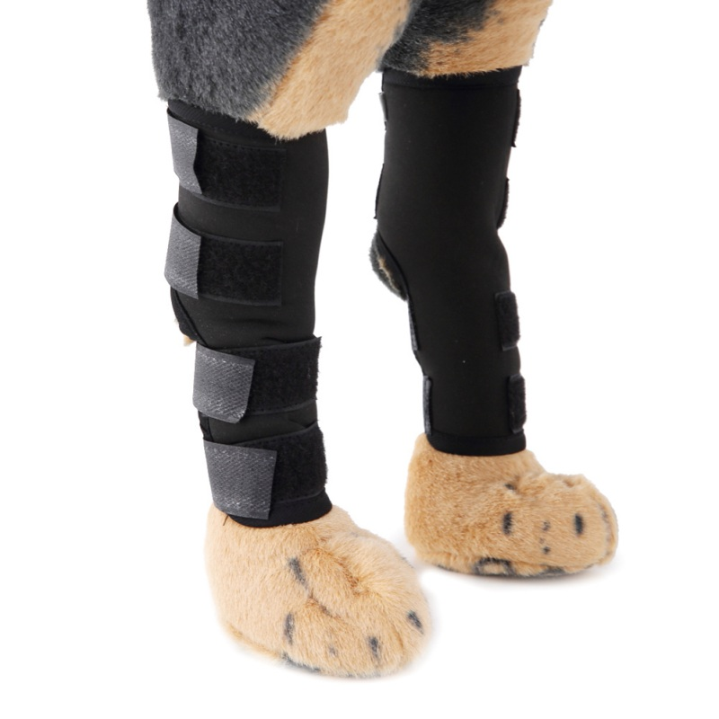 Pet Knee Pads Dog Puppy Wound Support Brace for Hind Leg Hock Joint Wrap Breathable Injury Recover Legs Dog Protector Support