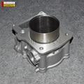 CILINDRO PARA HISUN 500CC ATV/STELS 500 ATV CUERPO DEL CILINDRO PIEZAS DEL MOTOR