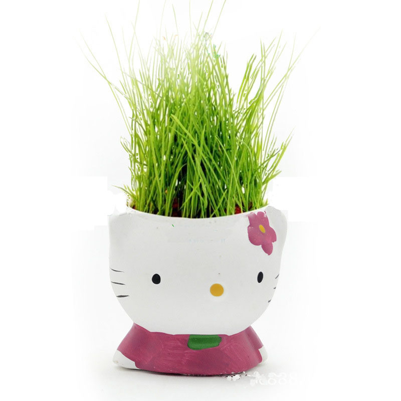 free shipping 4pcslotgangnam style mini hair grass plant kitty hair cheapest office desks