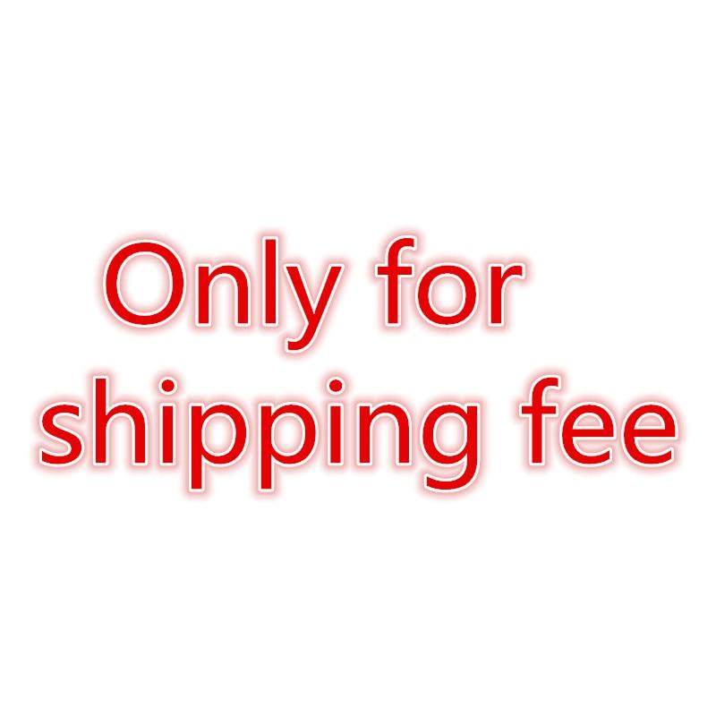 DHL EMS TNT UPS SF ARAMEX Sagawa  Express shipping fee Extra Fee