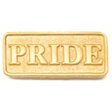 High quality Gold Plated PRIDE Lapel Pin  low price gay lapel pin FH680028