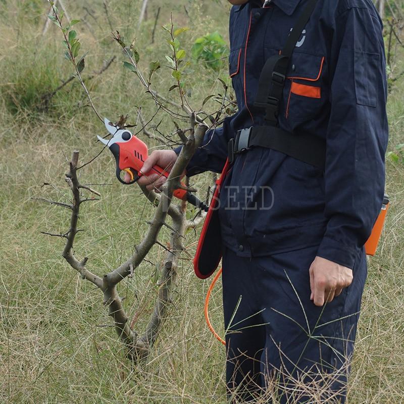 Ličio akumuliatorių vynuogyno ir vaismedžių sodo elektrinės - Sodo įrankiai - Nuotrauka 1