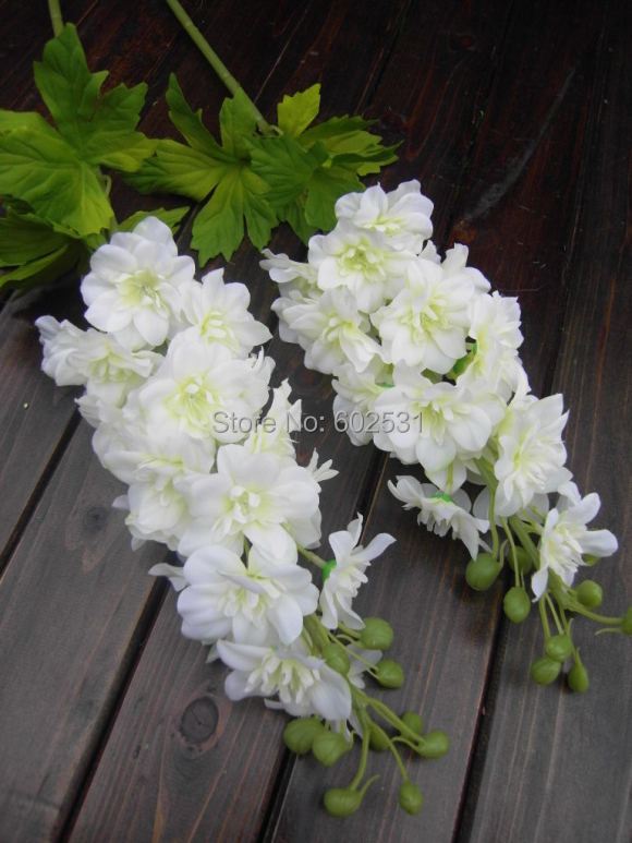 20PCS/lot Beautiful single vessel large delphinium hyacinth ...