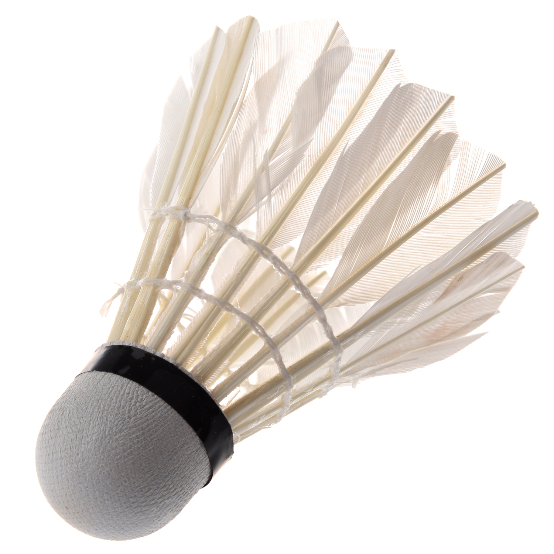 Hot 6PCS Professional Badminton Balls Portable White Goose Feather Training Badminton Ball Shuttlecocks Sports Accessories churrasqueira para fogão