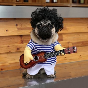 Dogs Play The Guitar Halloween Halloween Special Costume