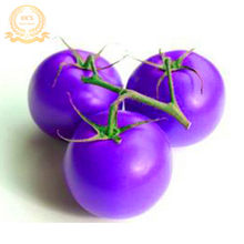 Best-Selling!Garden Heirloom Cherokee Purple Tomato F1 Bonsai, Bulk Pack, 100 PCS/Lot, Fantastic Edible Vegetable,#D95VK5(China)