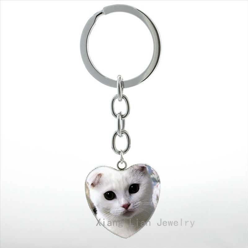 Detail Feedback Questions about New Cute white Scottish Fold ... bdfc88a661