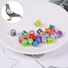 20 шт на лапку голубя кольца определить голубь полосы пластик с Al GB кольца голубь учебные принадлежности Алюминиевые кольца для голубей