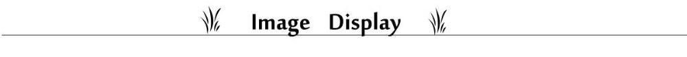 image display