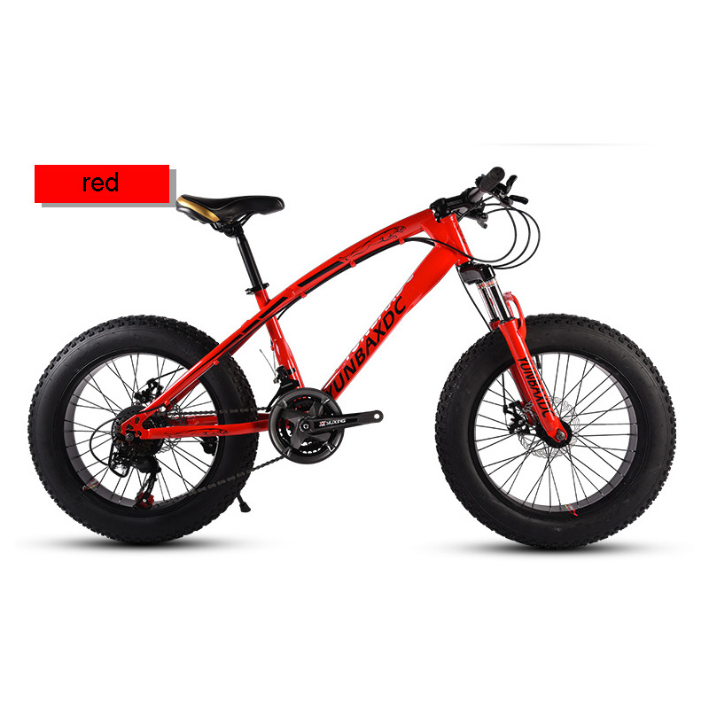 Snowy Mountain Bike 20 Inches 21 Speed 4.0 Inches Tire High Carbon Steel Frame For Snow Riding