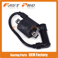 High Performance Motorcycle Ignition Coil For ZS177MM ZONGSHEN Engine NC250 KAYO T6 BSE J5 RX3 ZS250GY