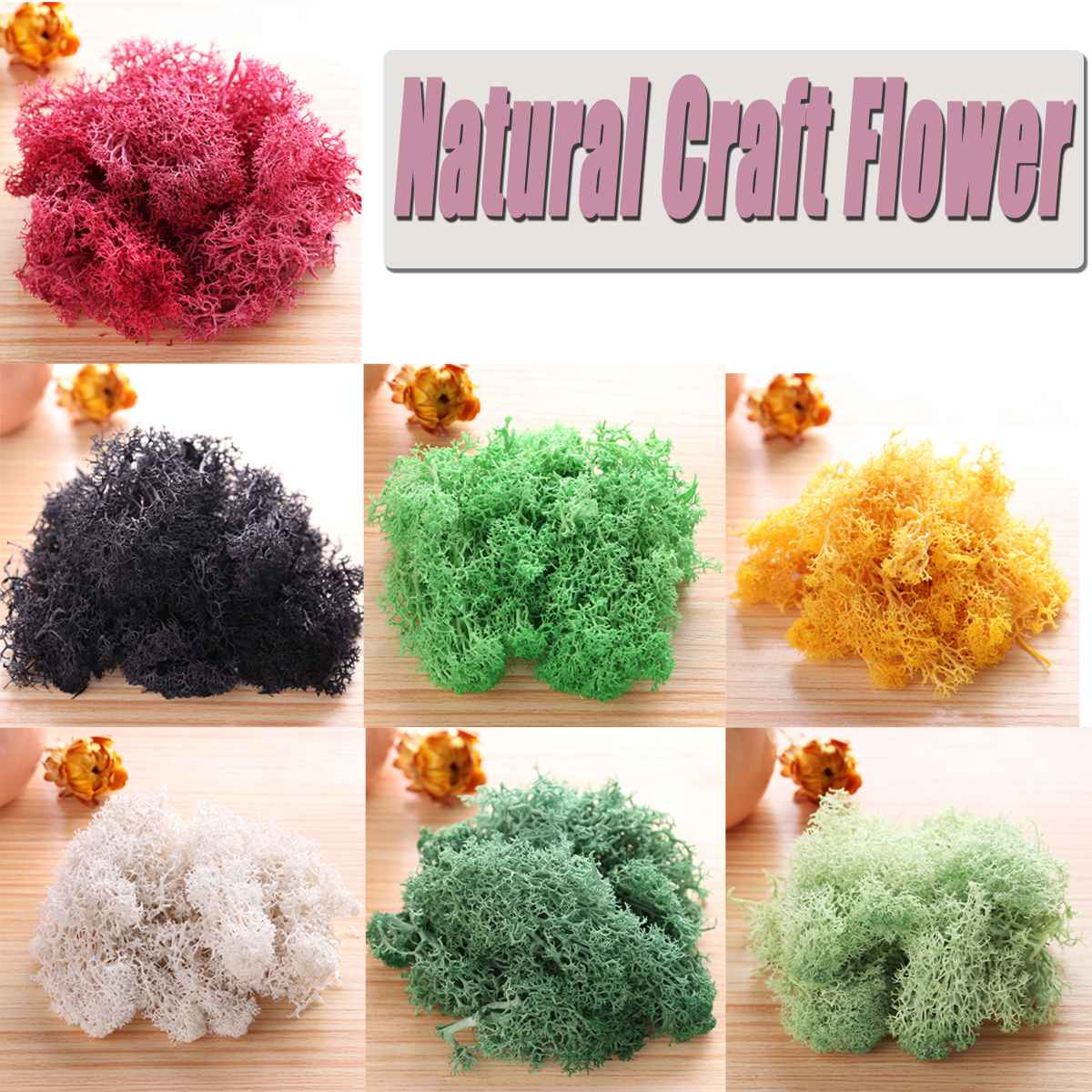 Natural Norwegian Reindeer Moss Preserved Dried Craft Flower Artificial Decorations Artificial & Dried Flowers