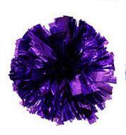 Purple Small cheer pom poms 5c64fbbde3eae