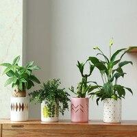 Nordic Creative Classic Golden Ceramic Pots Round Design Unique Green Leaf Home Decro Garden Vase Desktop