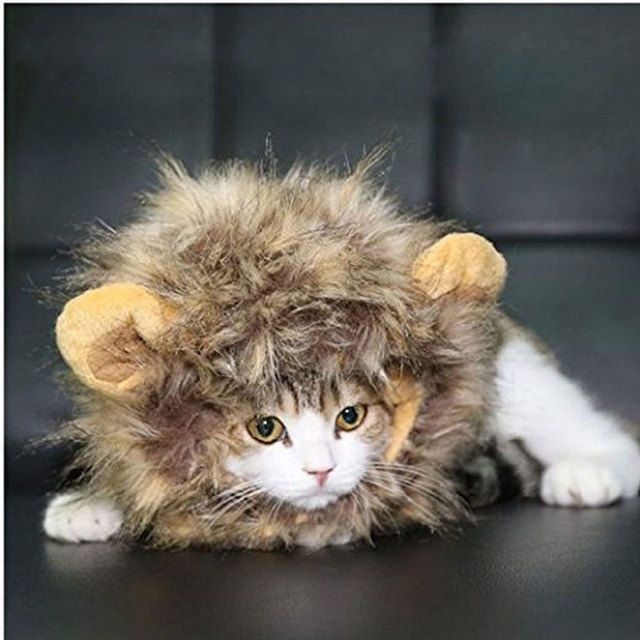 a47de079c Pet Costume Lion Mane Wig Cap With Ears Dog Cat Funny Halloween Chirstmas Party  Cosplay Accessories