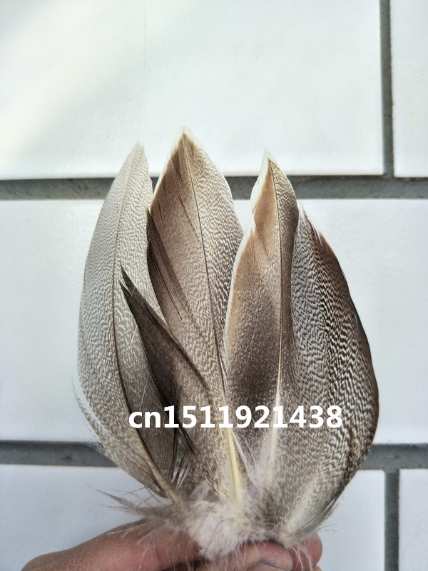 High quality wholesale beatiful 20pcs high quality natural pheasant feathers 5-10cm/2-4inch decorative diy Jewelry accessories