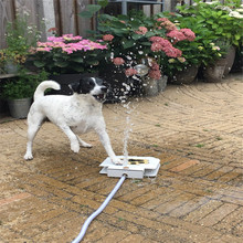 Dog Cat Pet Drinking Water Fountain High Quality Outdoor Sprinkler