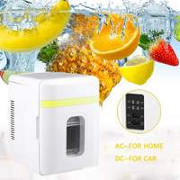 10L Mini Portable Car Refrigerator Two Type Electrical Cooler Heater Cooler&Warmer Cosmetics Fridge for Travel Hiking Camping
