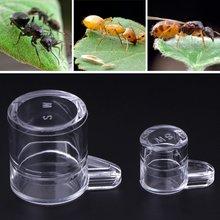 Новая высококачественная рабочая зона подачи воды для муравьиного