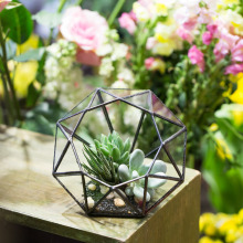 Modern Handmade Eight-surface Diamond Shape Geometric Glass Terrarium Succulent Plants Flower Pot Tabletop Planter Box Container