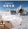 Peter Khanun White Goose Down Spring/Autumn Quilt/Comforter/Duvet/Blanket 100% Cotton Shell Twin Full Queen King Top Quality