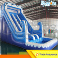 Inflatable Biggors Dolphin Water Pool Slide With Spray And Water Tube Shipping by Sea