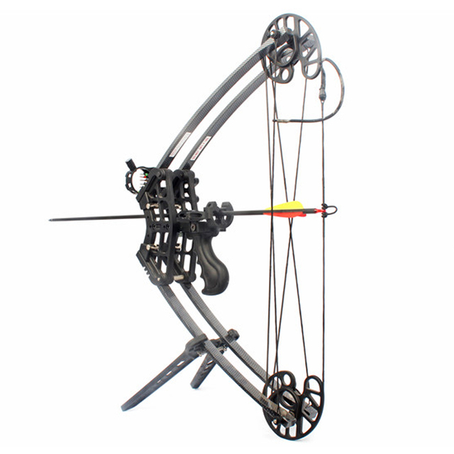 50lbs Compound Bow Archery Hunting Triangle Bow for Hunting Shooting Let-off 75-80% Suit For Left Hand and Right Hand Bow Arrow 2