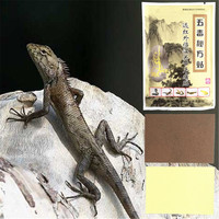 MIYUELENI Cheapest Lizard venom Essential oil Patch Plaster Assist treatment for cervical spine Lumbar disc protrusion 8Pcs/bag Essential Oil