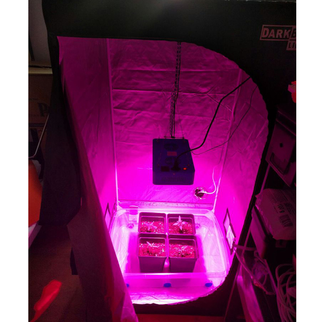 600W1200W/1800W/2700W Full Spectrum COB Chip LED Grow Light for Indoor Plant Vegetative Flowering