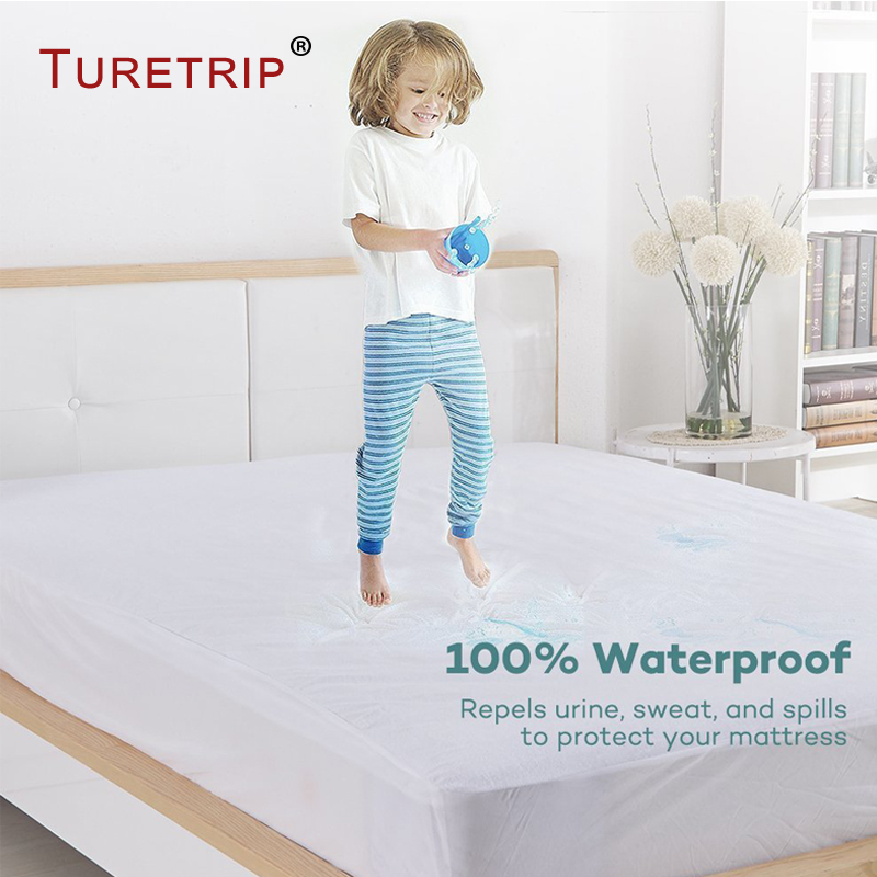 Mattress Cover Bed Bugs Dust Mite