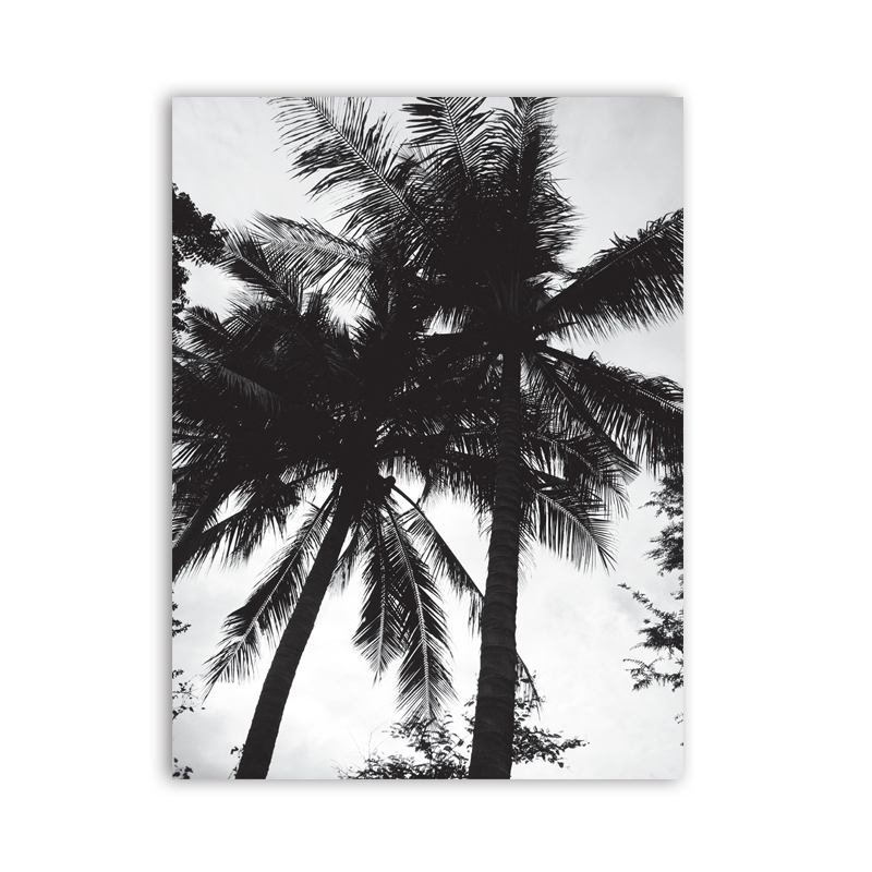 Black And White Coconut Tree Canvas Painting Home Decoration
