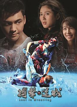 《搏击迷城》2015年中国大陆,香港动作电影在线观看