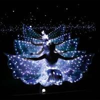 LED luminous wings Ballet Costume Fluorescent butterfly dance Cloak Dance Costume Belly Dance cloak prop Children's wings dress