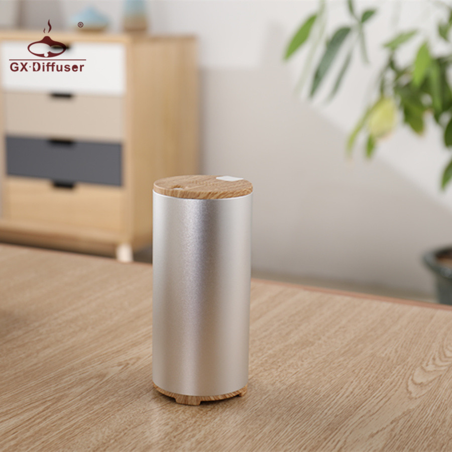 GX.Diffuser 2017 Newest Portable Mini Ozone Generator Fresh Ozone Air Purifier Car Home Ionizer USB Battery Ozonizer Air Cleaner
