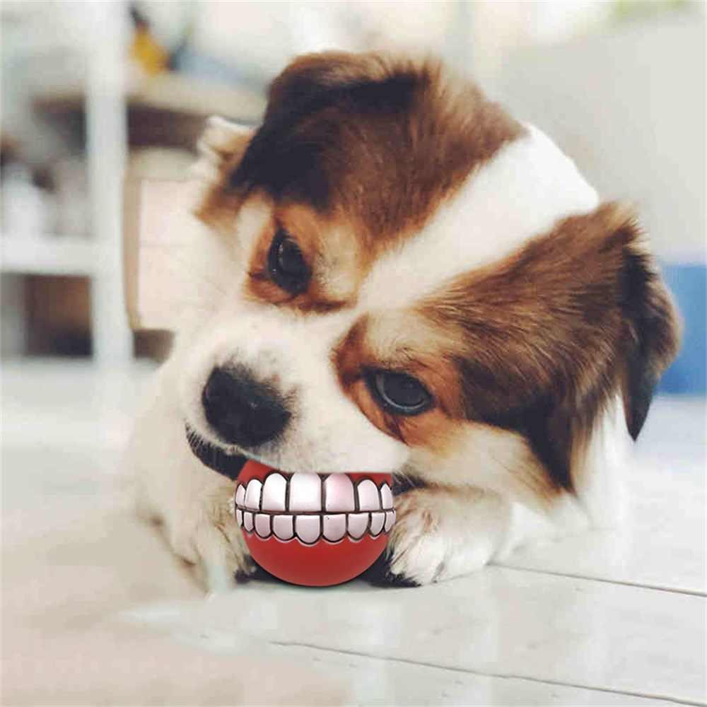 """1 шт.. Домашние животные собака щенок кошка мяч игрушка """"зубы"""" Забавные из красного ПВХ звук жевания товары для собак играть Fetching пищалка игрушки товары для домашних животных выборка игрушка"""