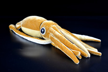 Cuttlefish Plush Toys Simulation Giant Squid Stuffed Toys  Cute Sea Animal Plush Dolls For Kids Gifts