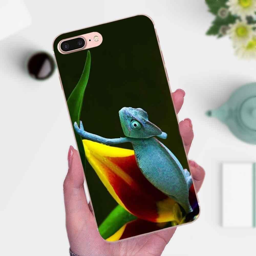 Животного игуаны Хамелеон ящерица Мягкие TPU телефон кожи для Apple IPhone X XS Max XR 4 4S 5 5C 5S SE 6 6 S 7 8 плюс