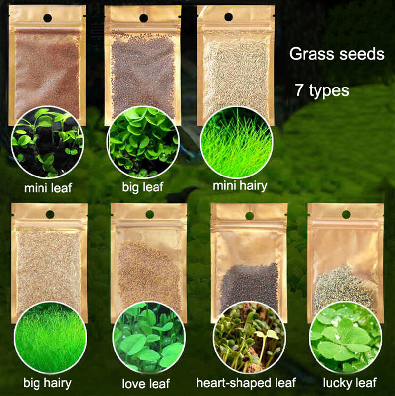 Water Grass Seed Aquarium Aquatic Plants Seeds Easy Planting Fish Tank Landscape Ornament Lawn Decor 1