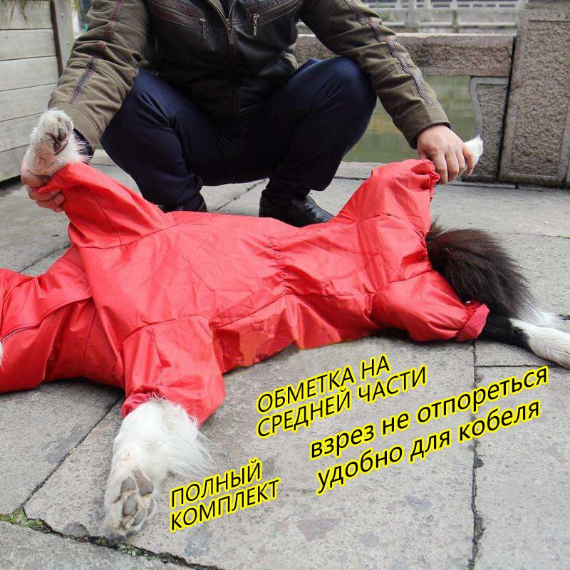 BENMEI 2018 Pet Small Large Dog Raincoat Clothes Pet Dog Raincoat Hoody Waterproof Rain Lovely Jackets Coat Apparel Clothes