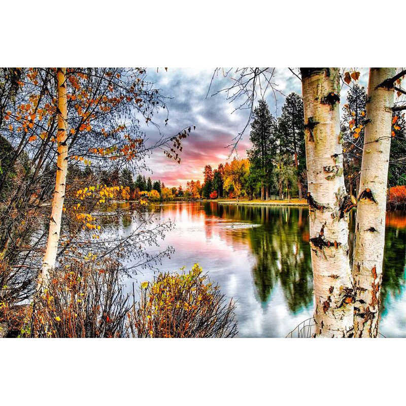 5D DIY Diamond Painting Sunset Landscape  Forest Tree Needlework Home Decorative Full Square Diamond Embroidery NMX  20:30