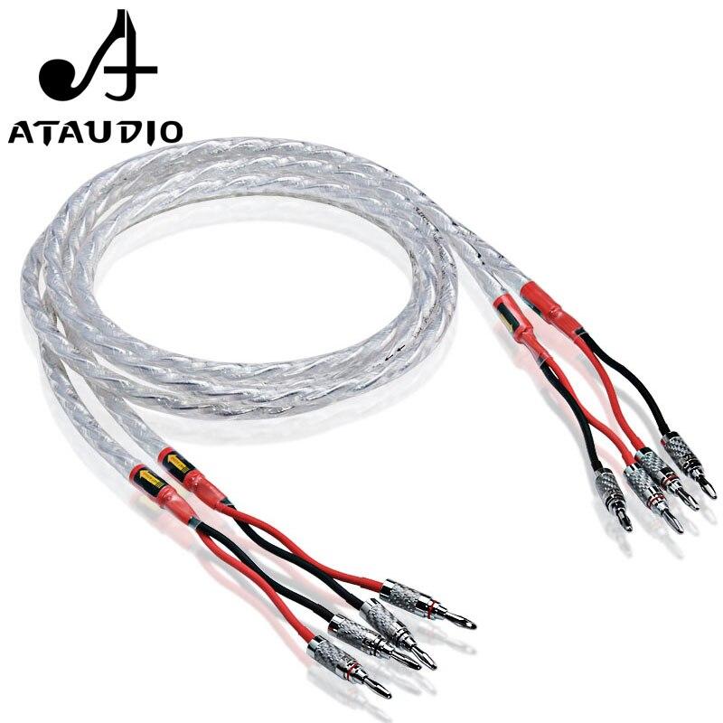 Une paire ATAUDIO HIFI câble haut-parleur plaqué argent Hi-end 6N OCC fil haut-parleur pour les systèmes Hi-fi